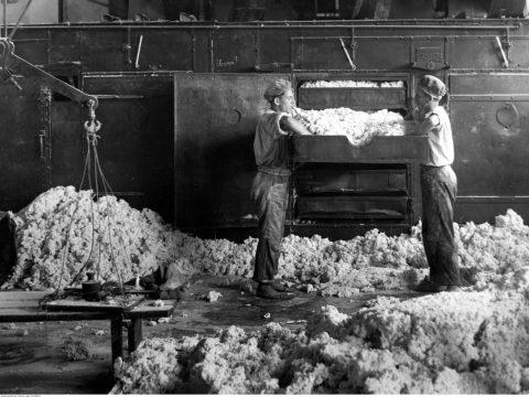 Robotnicy w TFSJ. Fot. audiovis.nac.gov.pl/obraz/63617/, Domena publiczna, https://commons.wikimedia.org/w/index.php?curid=75220367