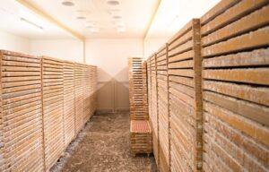 Osuszacze powietrza w składach drewna. Fot. dstpoland.pl
